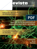 Revista FCM 1 Vol 15