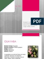 Metodos de Conservacion en La Guayaba y Durazno (1)
