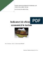Indicatori de eficienta economica in turism si alimentatie publica