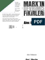 Alex Callinicos Marx in Devrimci Fikirleri