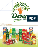 VRIO Analysis, Porters 5 Force Model & Value Chain- Dabur India Ltd.