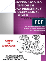 01. Introduc Modulo Gsso