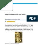 MONTICULOS MERINES - CELTAS- GALOS Y RUIDAS  (ACTUALIZADO).docx