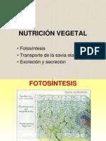 fisiologiavegetal4web-1208119594053056-9