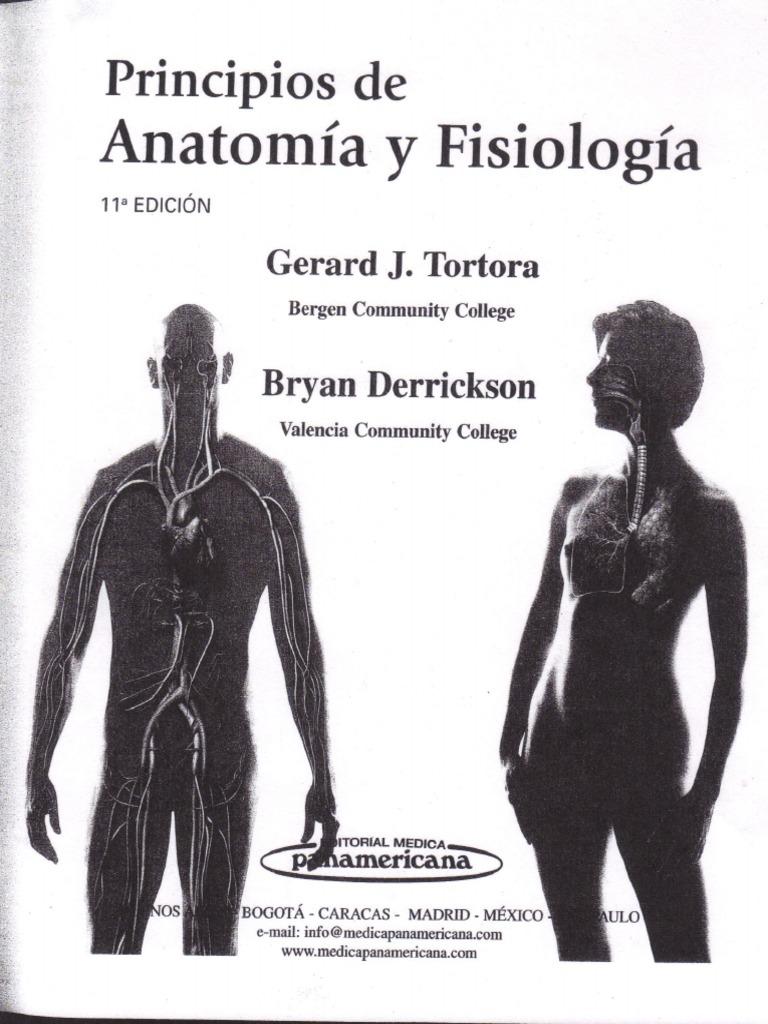 Lujoso Capítulo 11 De La Anatomía Y La Fisiología De Prueba Regalo ...