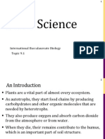 Plant Science (T9) P-1