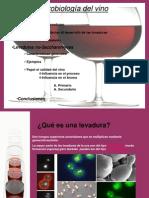 Microbiología del vino
