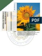 Sistema Energia Equipo Perforacion Rotaria