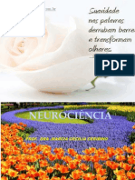3 Alta Floresta Neurociencia Neuropsicologia (