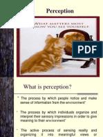 2 - Perception theory
