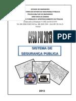 SISTEMA_DE_SEGURAN+çA_P+ÜBLICA- CFSD 2013