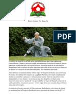 Breve Historia Del Kung Fu