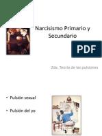 Narcisismo Primario y Secunadario