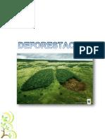 La Deforestación