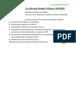 Examen 1º Parcial Enero 2010. Fisiología Vegetal