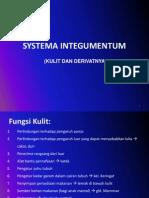 02-SPH 2010- Systema Integmentum