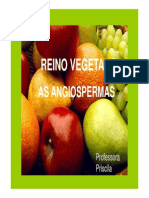 apresentacao_angiosperma