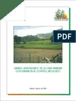 Manejo Agronomico de La Cana Panelera