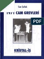1971 Cam Grevleri