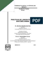 Manual de Prácticas Anatomía