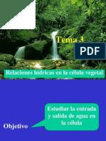 Tema 3. Relaciones Hidricas en La Celula Vegetal (1)