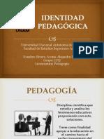 identidad pedaggica