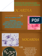 Expo Nocardia
