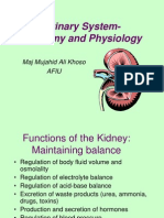 Anatomy & Physiology of Urinarysystem
