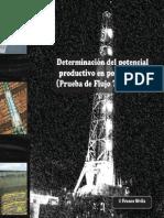 Potencial+Productivo+de+Pozos+Gasíferos