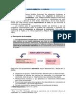 Anexo_Agrupamientos_flexibles