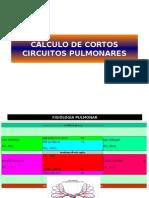 Calculo de Cortos Circuitos Pulmonares