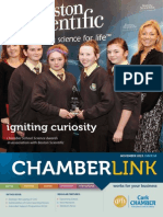 Cork Chamber - Chamberlink (Nov 2013)