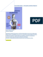Guía de los Movimientos de Musculación    Descripción Anatómica Mujeres