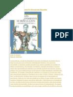 Guía De Los Movimientos De Musculación Masculina