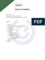 DTECargaMental