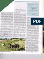 A Long Dry Summer(Economist 24 Aug)