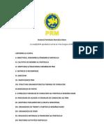 Statutul Partidului Romania Mare