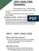 7217166 Why Why Analysis