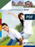 driel_122607.pdf