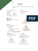 Guia de Estudio Sobre Congruencia Xime (1)