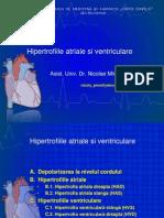 Lp2 EKG Hipertrofiile