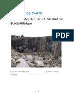 trabajo ignea texto SDSADDASD.pdf