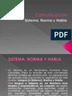 Lengua, Norma y Habla