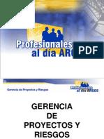 gerenciadeproyectosyriesgos2013