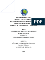 INDICES FINANCIEROS EN CONTABILIDAD GUBERNAMENTAL.docx