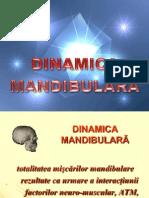 2007 Dinamica Mand