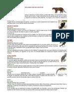 Animales en Peligro de Extincion Del Ecuador