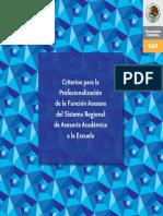 3. Criterios Profesinalización Función Asesora SAAE