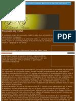 PAVONADO DEL METAL.pdf