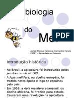 Microbiologia Do Mel
